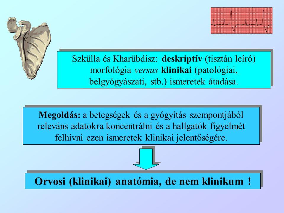 Szkülla és Kharübdisz: deskriptív (tisztán leíró) morfológia versus klinikai (patológiai, belgyógyászati, stb.) ismeretek átadása. Megoldás: a betegsé
