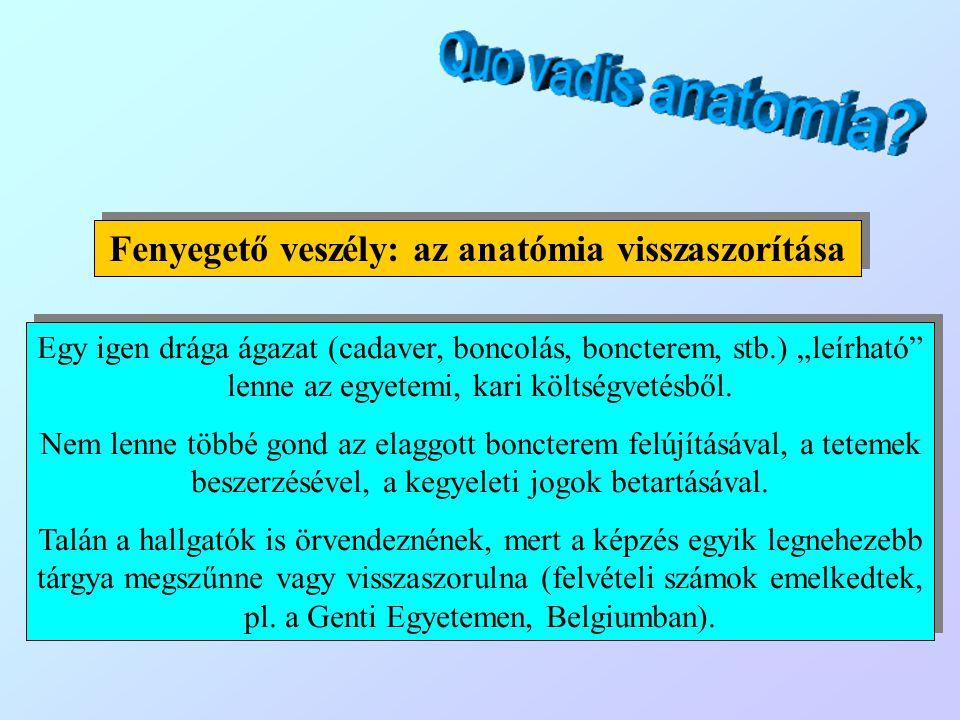 Jelenjen meg az anatómia a felsőbb évfolyamokon (pl.