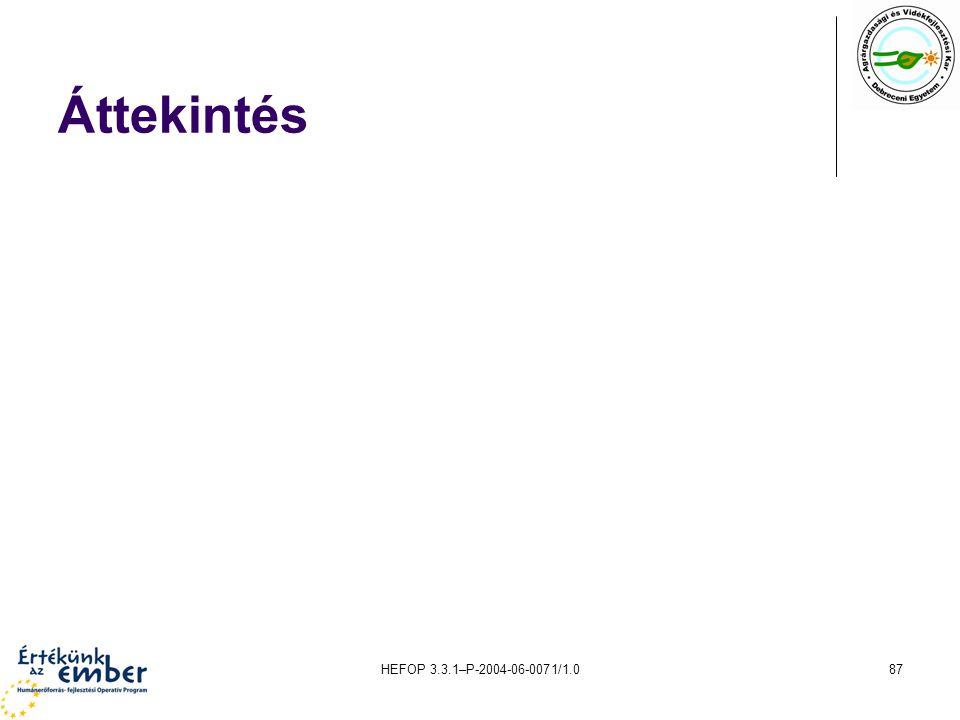 HEFOP 3.3.1–P-2004-06-0071/1.087 Áttekintés