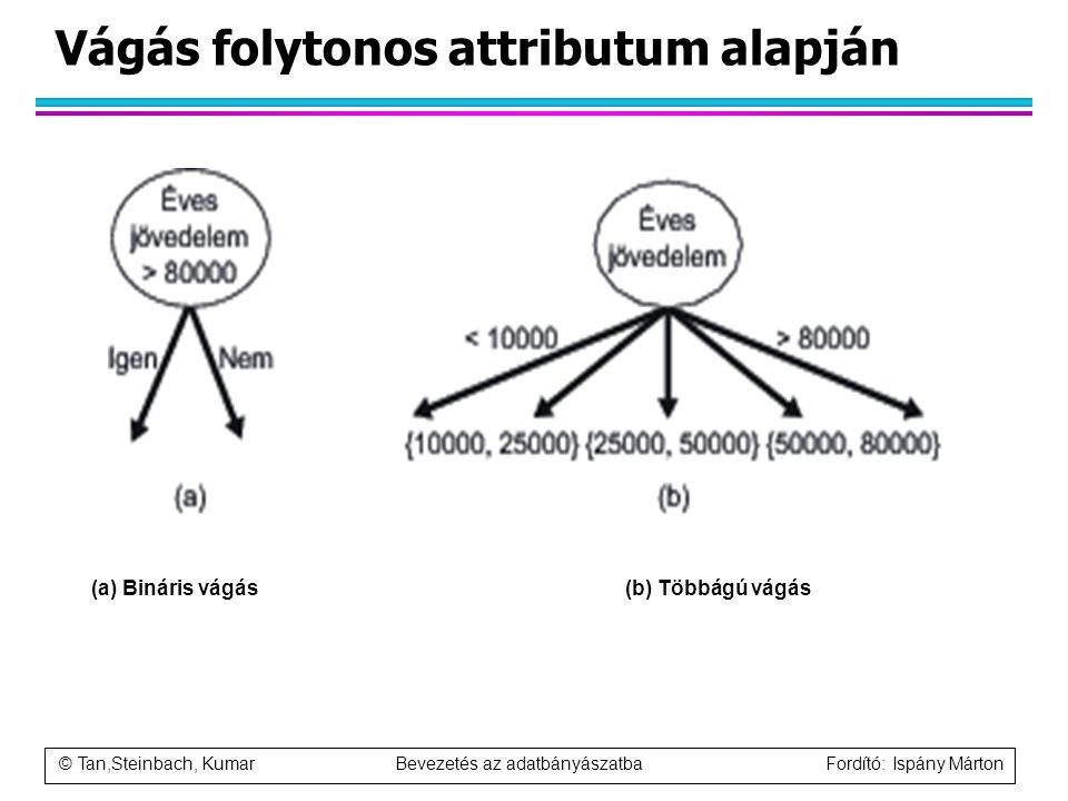 © Tan,Steinbach, Kumar Bevezetés az adatbányászatba Fordító: Ispány Márton Vágás folytonos attributum alapján (a) Bináris vágás(b) Többágú vágás