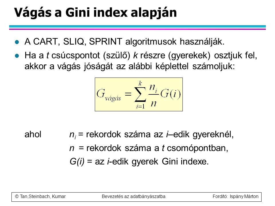 © Tan,Steinbach, Kumar Bevezetés az adatbányászatba Fordító: Ispány Márton Vágás a Gini index alapján l A CART, SLIQ, SPRINT algoritmusok használják.