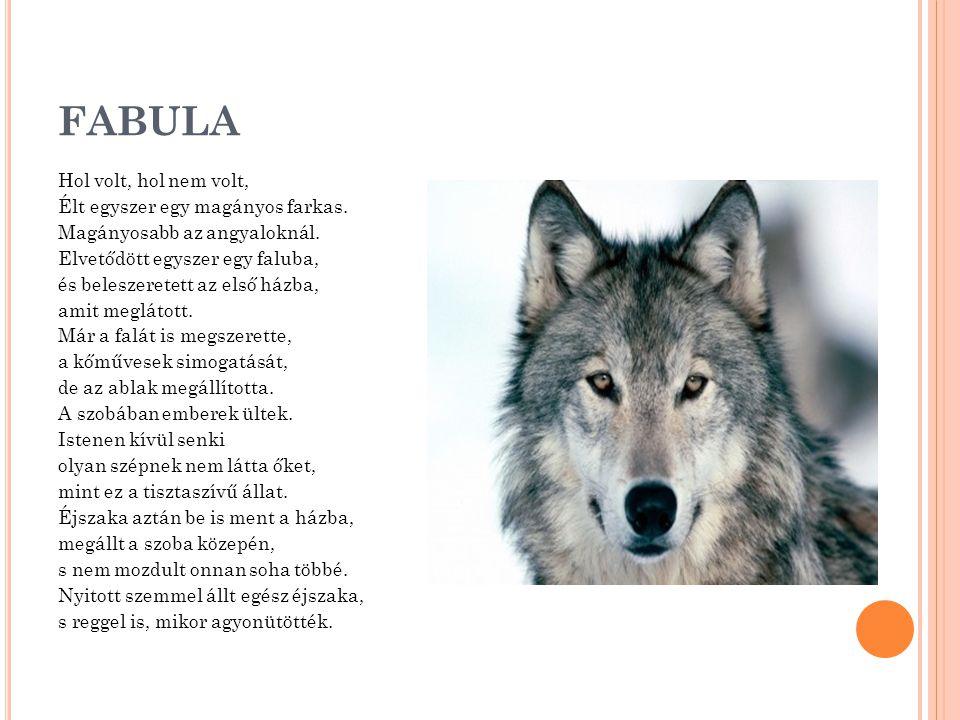 FABULA Hol volt, hol nem volt, Élt egyszer egy magányos farkas. Magányosabb az angyaloknál. Elvetődött egyszer egy faluba, és beleszeretett az első há