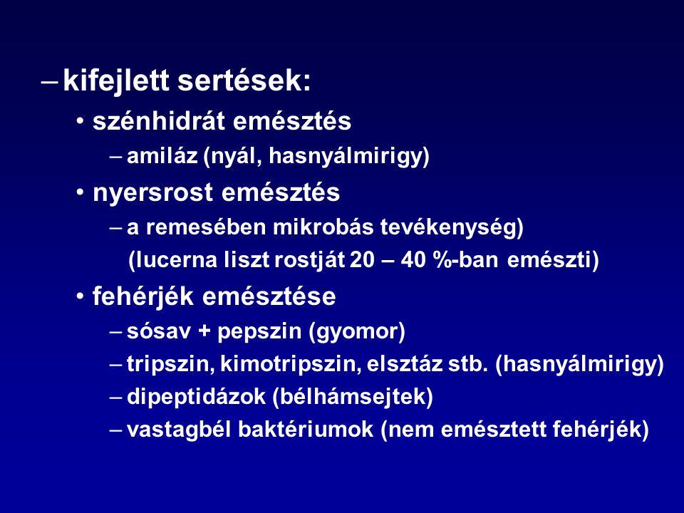 –kifejlett sertések: szénhidrát emésztés –amiláz (nyál, hasnyálmirigy) nyersrost emésztés –a remesében mikrobás tevékenység) (lucerna liszt rostját 20
