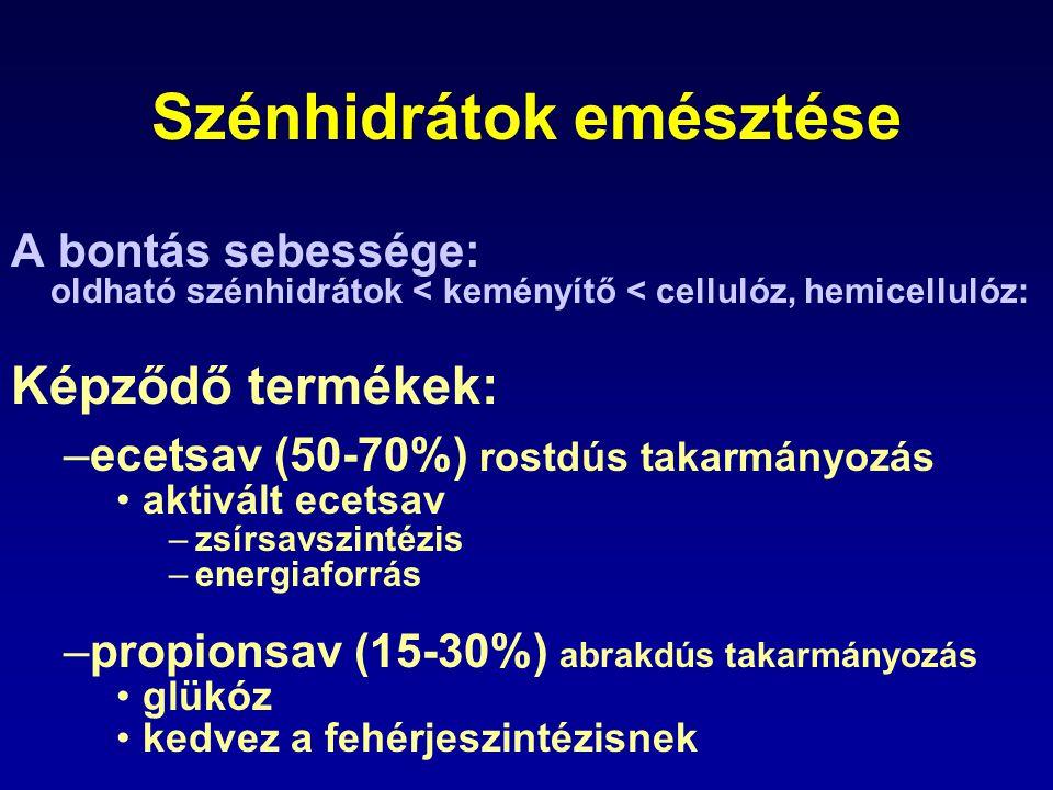 Szénhidrátok emésztése A bontás sebessége: oldható szénhidrátok < keményítő < cellulóz, hemicellulóz: Képződő termékek: –ecetsav (50-70%) rostdús taka