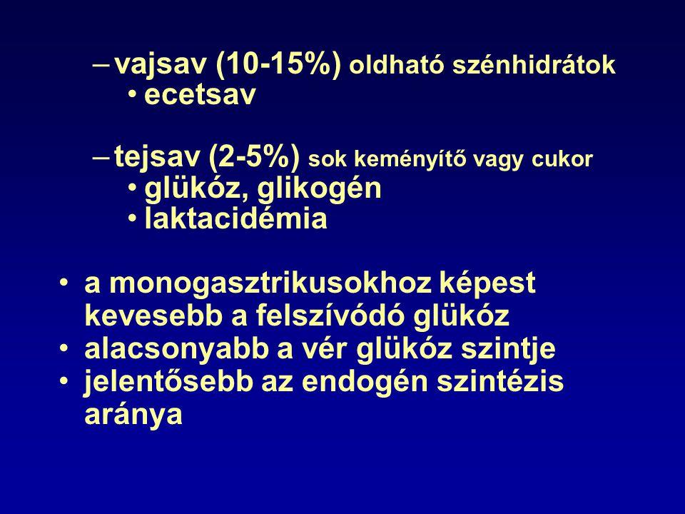 –vajsav (10-15%) oldható szénhidrátok ecetsav –tejsav (2-5%) sok keményítő vagy cukor glükóz, glikogén laktacidémia a monogasztrikusokhoz képest keves