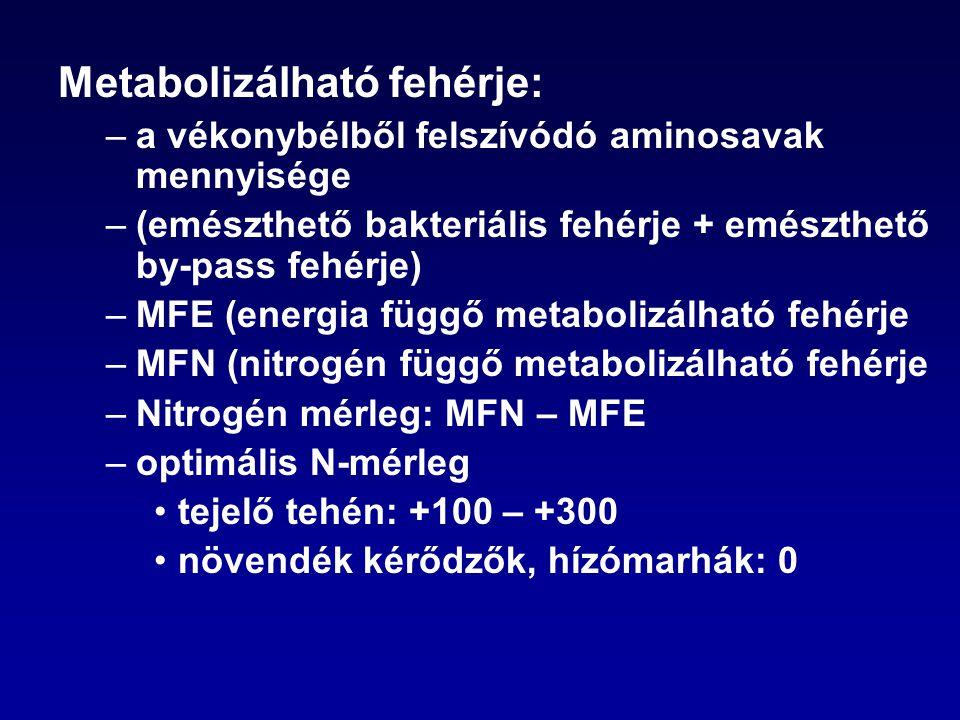 Metabolizálható fehérje: –a vékonybélből felszívódó aminosavak mennyisége –(emészthető bakteriális fehérje + emészthető by-pass fehérje) –MFE (energia