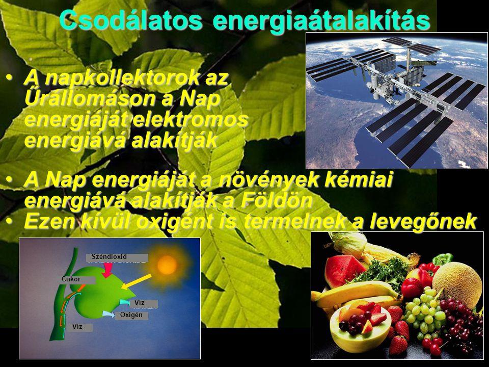 A napkollektorok az Űrállomáson a Nap energiáját elektromos energiává alakítjákA napkollektorok az Űrállomáson a Nap energiáját elektromos energiává alakítják A Nap energiáját a növények kémiai energiává alakítják a FöldönA Nap energiáját a növények kémiai energiává alakítják a Földön Ezen kívül oxigént is termelnek a levegőnekEzen kívül oxigént is termelnek a levegőnek Csodálatos energiaátalakítás Víz Oxigén Víz Széndioxid Cukor