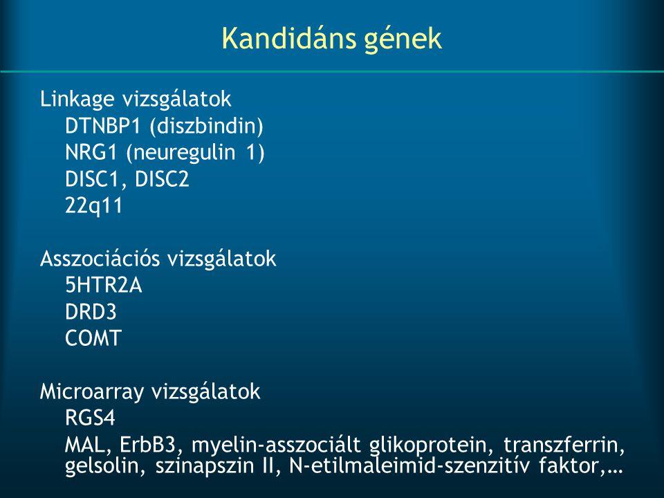 Kandidáns gének Linkage vizsgálatok DTNBP1 (diszbindin) NRG1 (neuregulin 1) DISC1, DISC2 22q11 Asszociációs vizsgálatok 5HTR2A DRD3 COMT Microarray vi