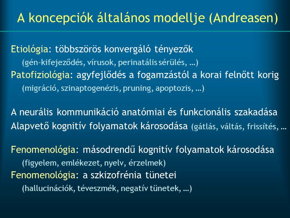 A koncepciók általános modellje (Andreasen) Etiológia: többszörös konvergáló tényezők (gén-kifejeződés, vírusok, perinatális sérülés, …) Patofiziológi