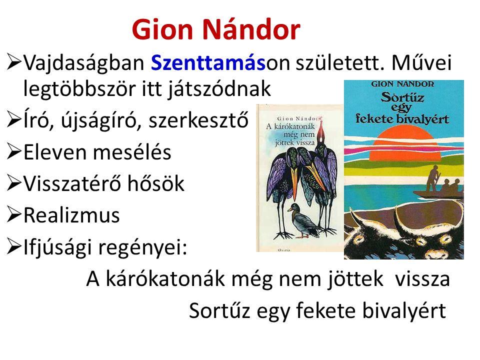 Gion Nándor  Vajdaságban Szenttamáson született. Művei legtöbbször itt játszódnak  Író, újságíró, szerkesztő  Eleven mesélés  Visszatérő hősök  R