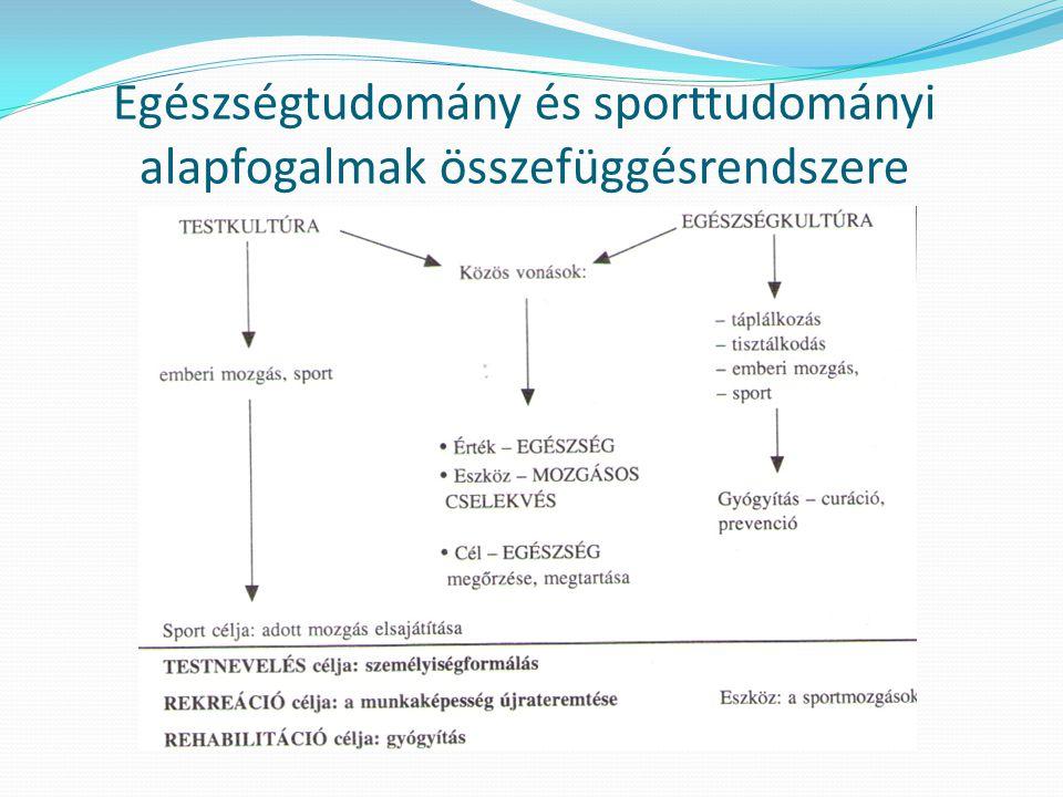 Egészségtudomány és sporttudományi alapfogalmak összefüggésrendszere