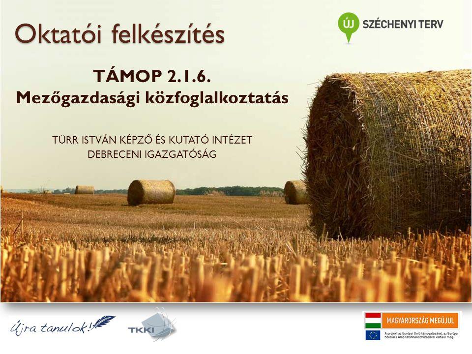 Oktatói felkészítés TÁMOP 2.1.6. Mezőgazdasági közfoglalkoztatás TÜRR ISTVÁN KÉPZŐ ÉS KUTATÓ INTÉZET DEBRECENI IGAZGATÓSÁG