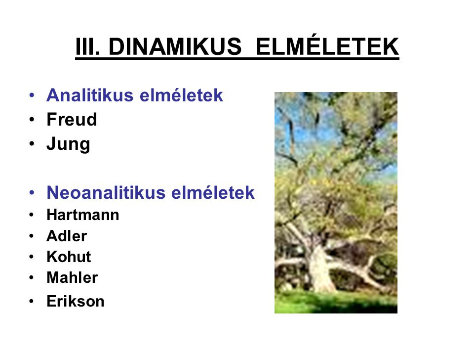 III. DINAMIKUS ELMÉLETEK Analitikus elméletek Freud Jung Neoanalitikus elméletek Hartmann Adler Kohut Mahler Erikson