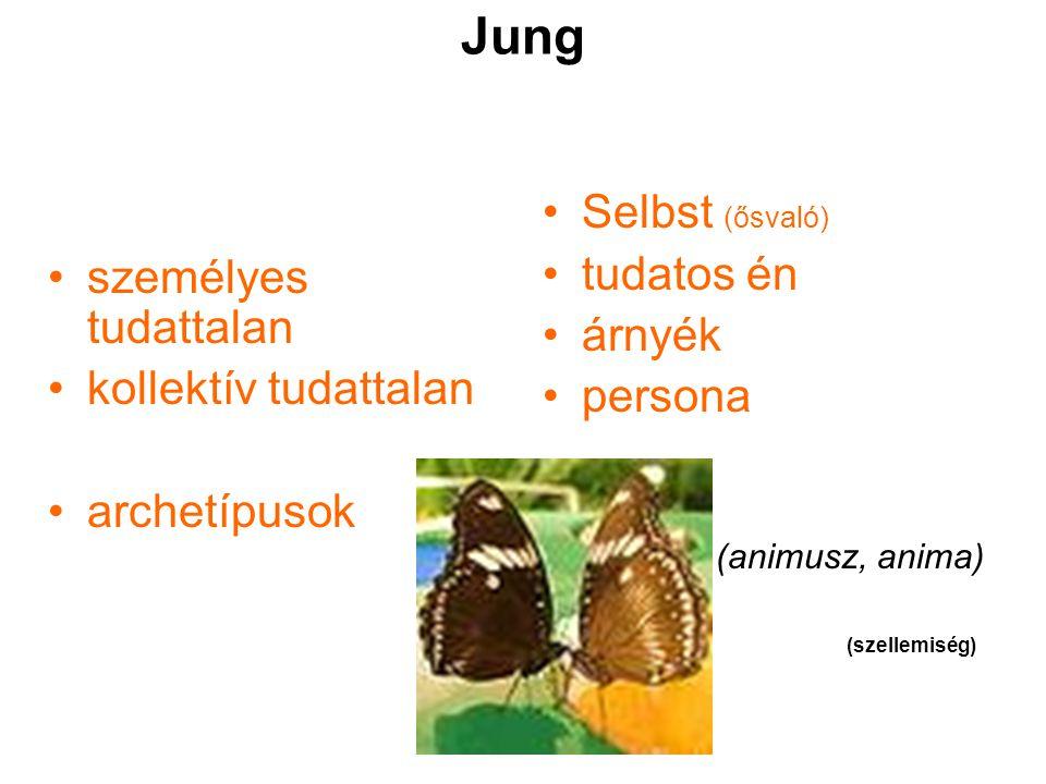 Jung személyes tudattalan kollektív tudattalan archetípusok Selbst (ősvaló) tudatos én árnyék persona (animusz, anima) (szellemiség)