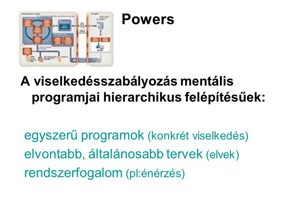 Powers A viselkedésszabályozás mentális programjai hierarchikus felépítésűek: egyszerű programok (konkrét viselkedés) elvontabb, általánosabb tervek (elvek) rendszerfogalom (pl:énérzés)