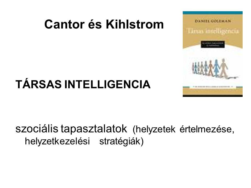 Cantor és Kihlstrom TÁRSAS INTELLIGENCIA szociális tapasztalatok (helyzetek értelmezése, helyzetkezelési stratégiák)