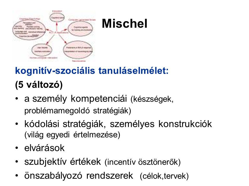 Mischel kognitív-szociális tanuláselmélet: (5 változó) a személy kompetenciái (készségek, problémamegoldó stratégiák) kódolási stratégiák, személyes konstrukciók (világ egyedi értelmezése) elvárások szubjektív értékek (incentív ösztönerők) önszabályozó rendszerek (célok,tervek)