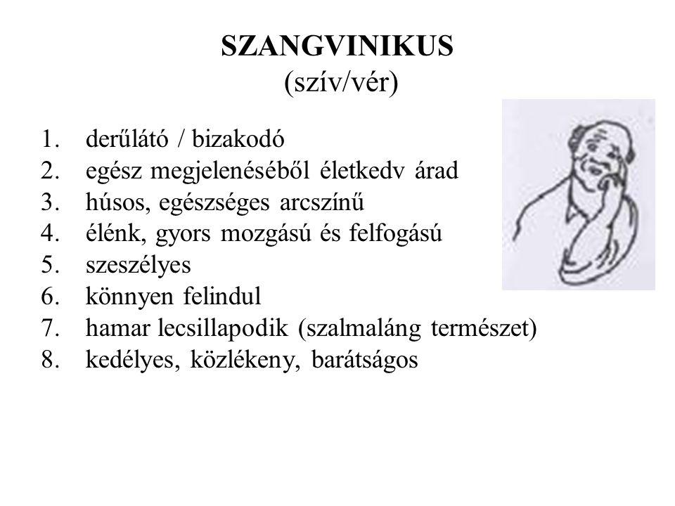 Sheldon Szomatikus típusok: EndomorfiaViszcerotoniaEndoderma - belső csíralemez fejlettsége;hasi emésztőszervek nagyok és erősek, lágy lekerekítettség relatív túlsúlya.