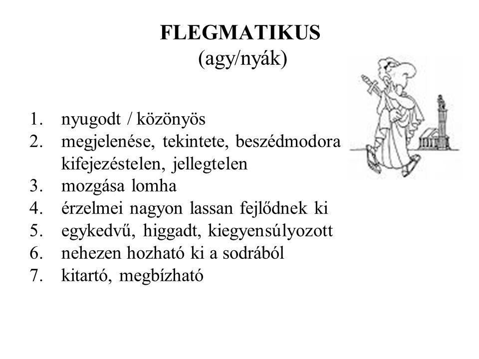 FLEGMATIKUS (agy/nyák) 1.nyugodt / közönyös 2.megjelenése, tekintete, beszédmodora kifejezéstelen, jellegtelen 3.mozgása lomha 4.érzelmei nagyon lassan fejlődnek ki 5.egykedvű, higgadt, kiegyensúlyozott 6.nehezen hozható ki a sodrából 7.kitartó, megbízható