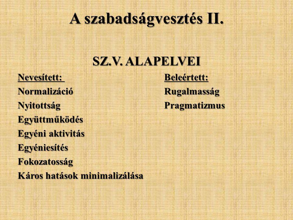 A törvény főbb üzenetei Korszakváltás a Büntetés-végrehajtásban, az új fejlődési pálya Paradigmaváltás Szintézis Pragmatikus szemlélet