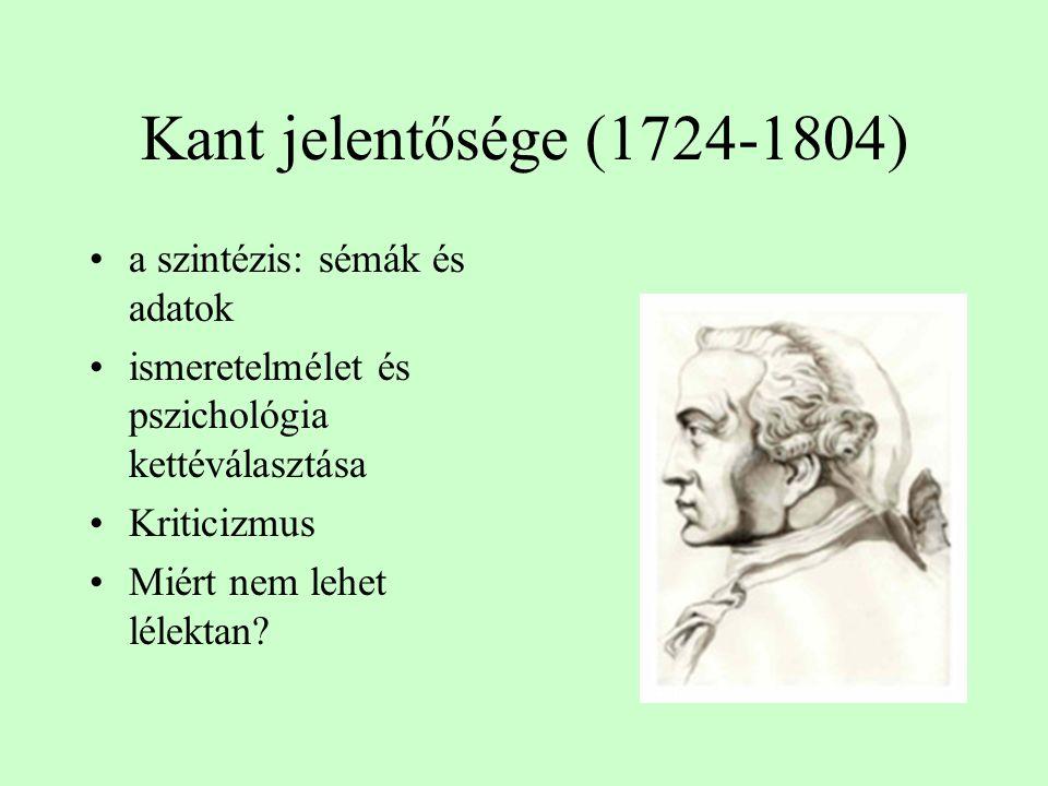 Kant jelentősége (1724-1804) a szintézis: sémák és adatok ismeretelmélet és pszichológia kettéválasztása Kriticizmus Miért nem lehet lélektan?