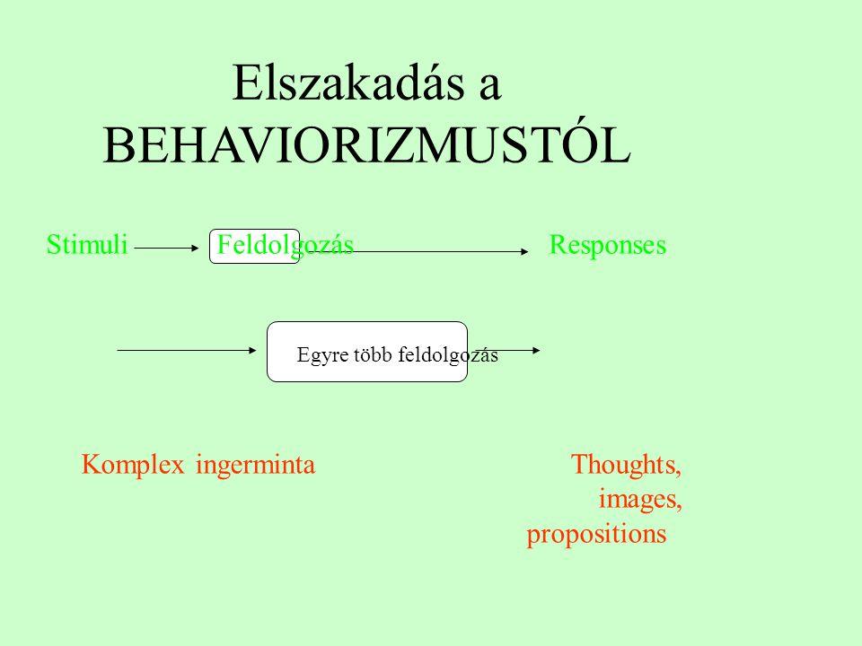 Elszakadás a BEHAVIORIZMUSTÓL Egyre több feldolgozás Komplex ingerminta Thoughts, images, propositions Stimuli Feldolgozás Responses