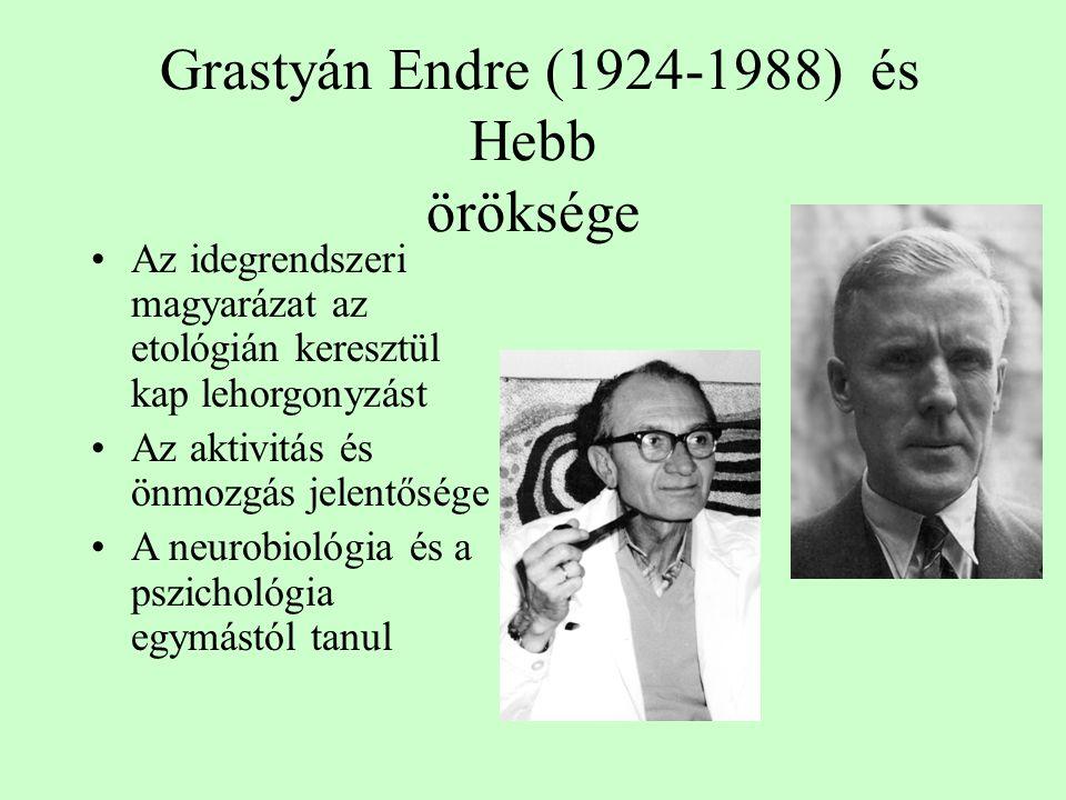 Grastyán Endre (1924-1988) és Hebb öröksége Az idegrendszeri magyarázat az etológián keresztül kap lehorgonyzást Az aktivitás és önmozgás jelentősége