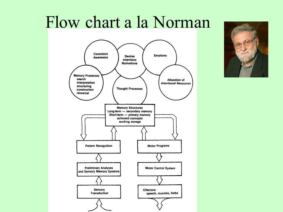 Flow chart a la Norman