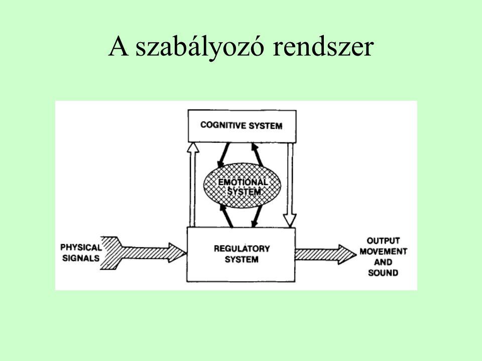A szabályozó rendszer