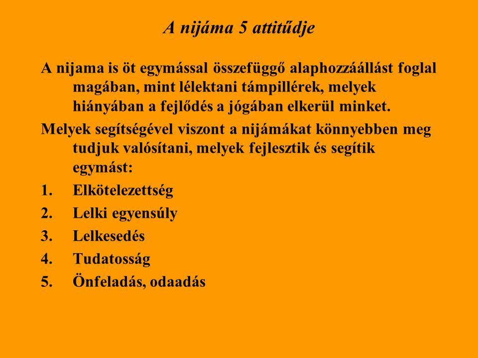A nijáma 5 attitűdje A nijama is öt egymással összefüggő alaphozzáállást foglal magában, mint lélektani támpillérek, melyek hiányában a fejlődés a jógában elkerül minket.
