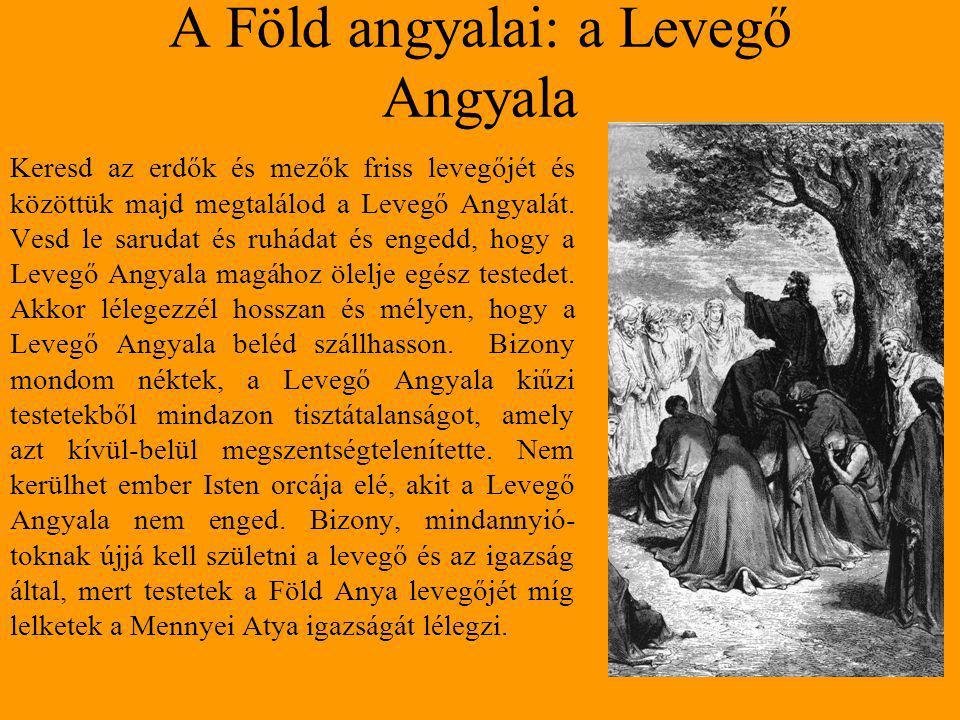 A Föld angyalai: a Levegő Angyala Keresd az erdők és mezők friss levegőjét és közöttük majd megtalálod a Levegő Angyalát.