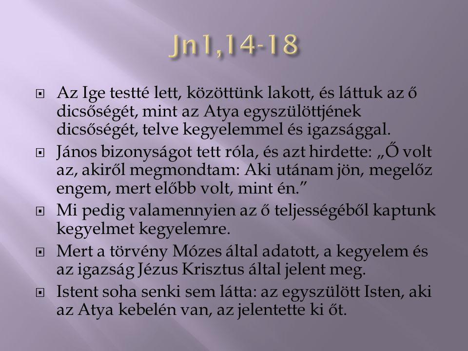  Az Ige testté lett, közöttünk lakott, és láttuk az ő dicsőségét, mint az Atya egyszülöttjének dicsőségét, telve kegyelemmel és igazsággal.