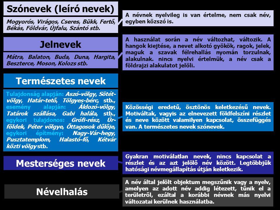 Szónevek (leíró nevek) Jelnevek Mesterséges nevek Természetes nevek A névnek nyelvileg is van értelme, nem csak név, egyben közszó is. A használat sor