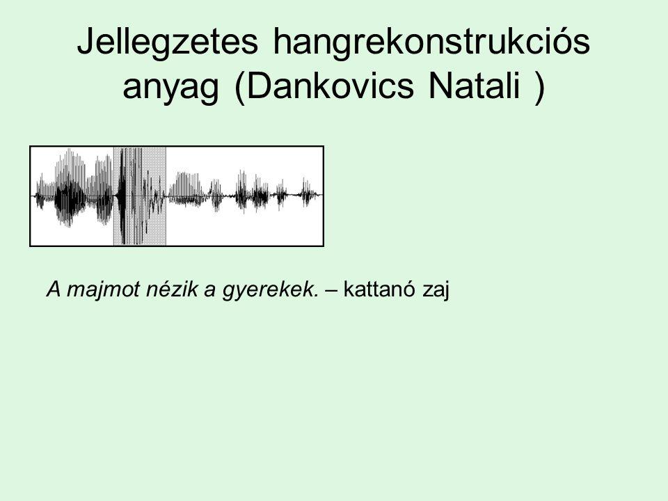 Jellegzetes hangrekonstrukciós anyag (Dankovics Natali ) A majmot nézik a gyerekek. – kattanó zaj