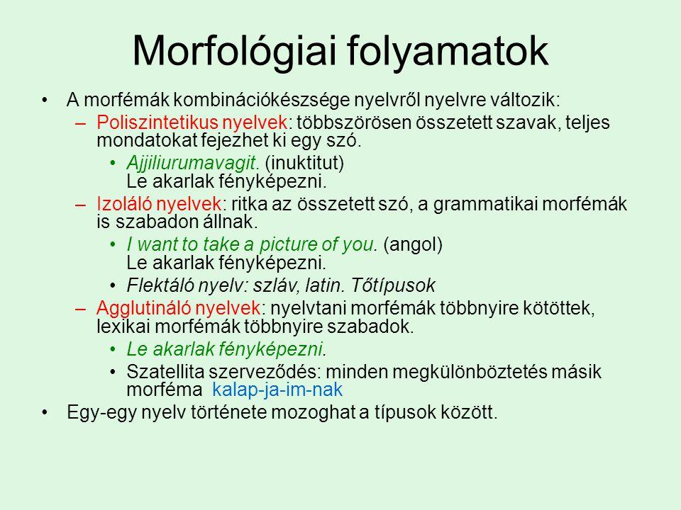 Morfológiai folyamatok A morfémák kombinációkészsége nyelvről nyelvre változik: –Poliszintetikus nyelvek: többszörösen összetett szavak, teljes mondat
