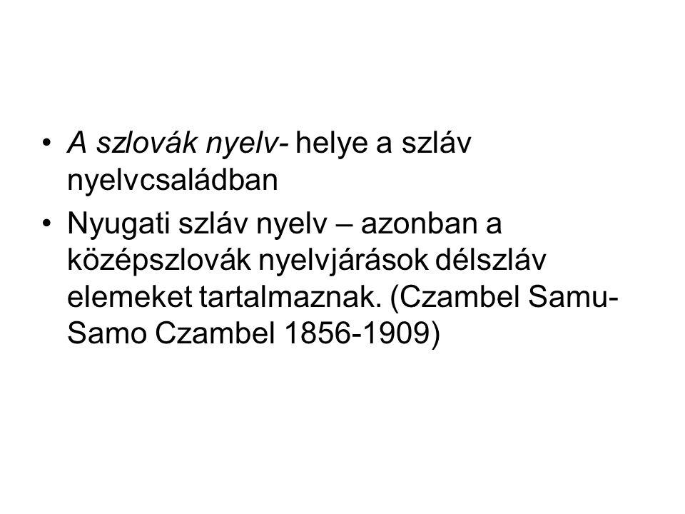 A szlovák nyelv- helye a szláv nyelvcsaládban Nyugati szláv nyelv – azonban a középszlovák nyelvjárások délszláv elemeket tartalmaznak. (Czambel Samu-