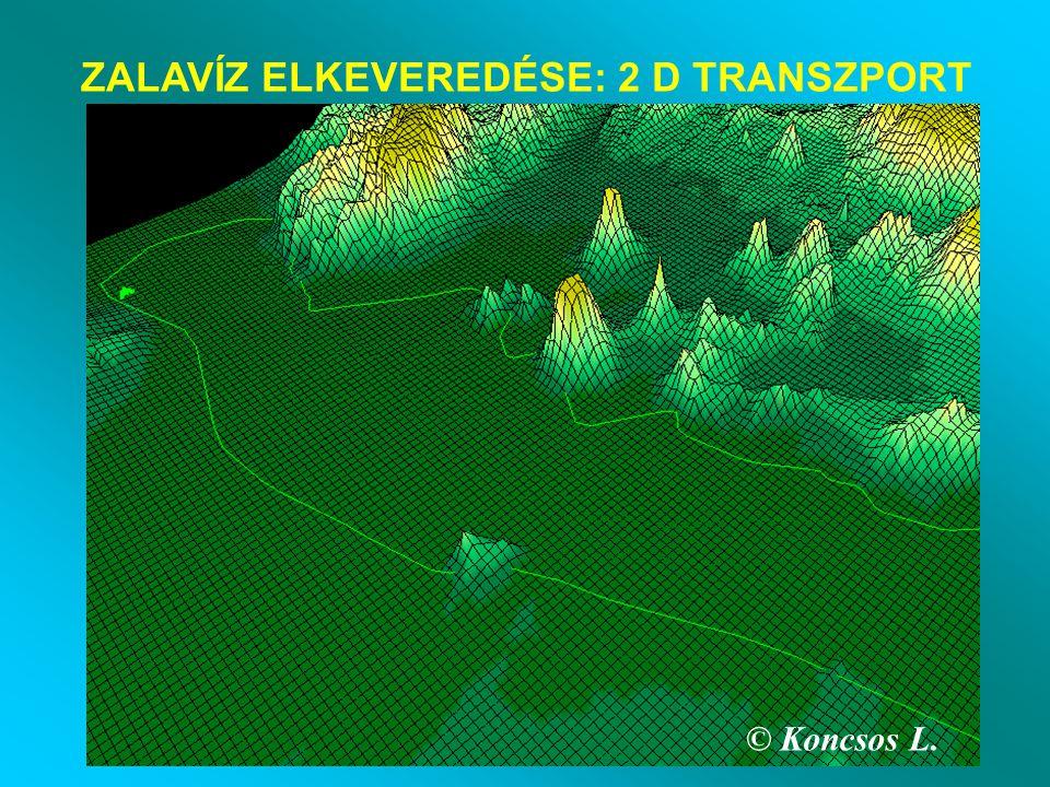 © Koncsos L. ZALAVÍZ ELKEVEREDÉSE: 2 D TRANSZPORT