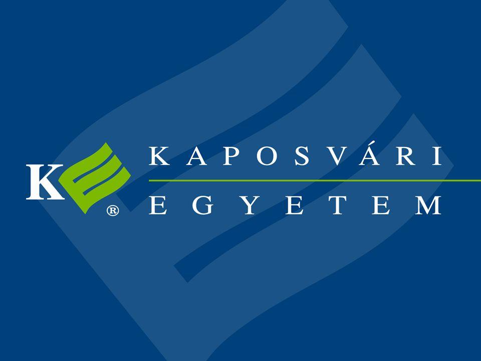 Barna Róbert KE GTK Informatika Tanszék Pénzügyi feladatok VBA támogatása 6. előadás