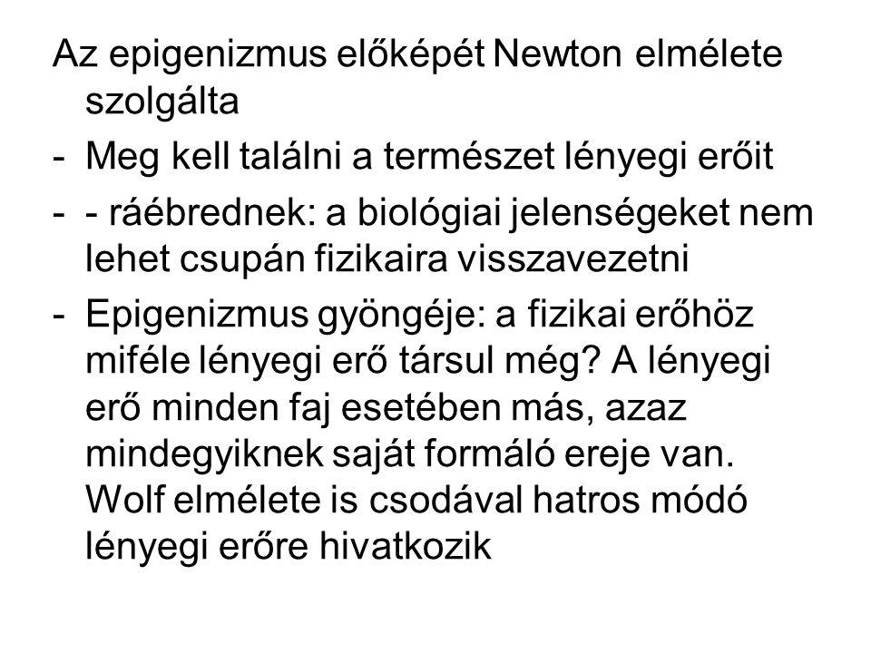 Az epigenizmus előképét Newton elmélete szolgálta -Meg kell találni a természet lényegi erőit -- ráébrednek: a biológiai jelenségeket nem lehet csupán fizikaira visszavezetni -Epigenizmus gyöngéje: a fizikai erőhöz miféle lényegi erő társul még.