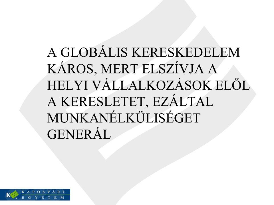 A gazdaságtörténet nemzetközi dimenziói Mikro (háztartás, vállalkozás) Makro (növekedés, szerkezetváltás, gazdasági konjunktúra, válság, foglalkoztatottság) Politikai megközelítés (gazdasági rend, nemzetközi gazdasági kapcsolatok, gazdasági önszerveződés) Annales csoport - Mikrotörténelem
