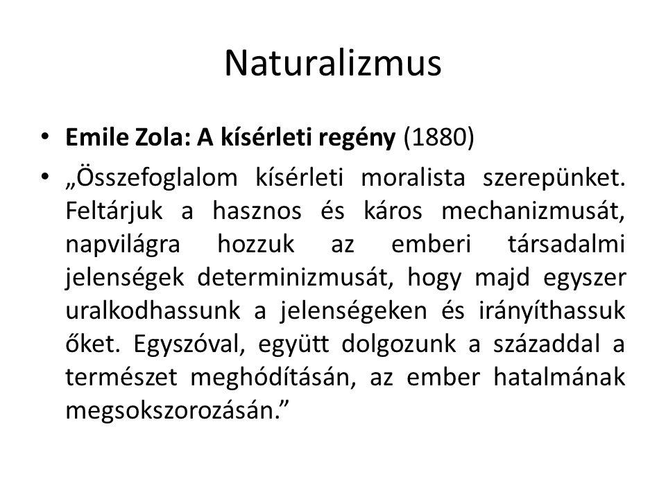 """Naturalizmus Emile Zola: A kísérleti regény (1880) """"Összefoglalom kísérleti moralista szerepünket. Feltárjuk a hasznos és káros mechanizmusát, napvilá"""
