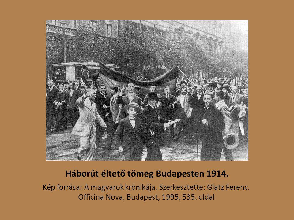 Háborút éltető tömeg Budapesten 1914.Kép forrása: A magyarok krónikája.