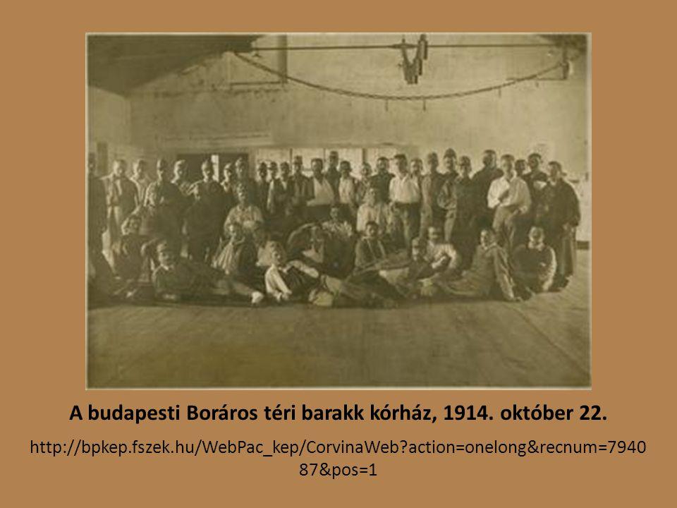A budapesti Boráros téri barakk kórház, 1914.október 22.
