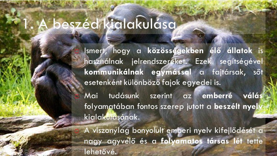 1. A beszéd kialakulása  Ismert, hogy a közösségekben élő állatok is használnak jelrendszereket. Ezek segítségével kommunikálnak egymással a fajtársa