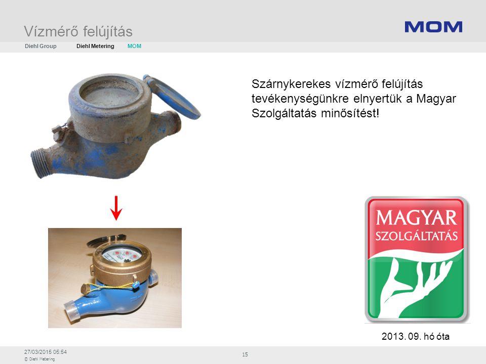 27/03/2015 05:54 © Diehl Metering 15 Vízmérő felújítás 2013. 09. hó óta Szárnykerekes vízmérő felújítás tevékenységünkre elnyertük a Magyar Szolgáltat