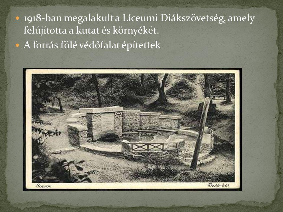 1918-ban megalakult a Líceumi Diákszövetség, amely felújította a kutat és környékét. A forrás fölé védőfalat építettek