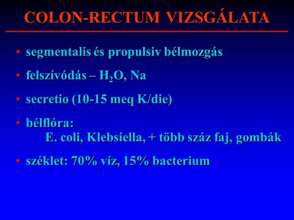 segmentalis és propulsiv bélmozgás felszívódás – H 2 O, Na secretio (10-15 meq K/die) bélflóra: E. coli, Klebsiella, + több száz faj, gombák széklet: