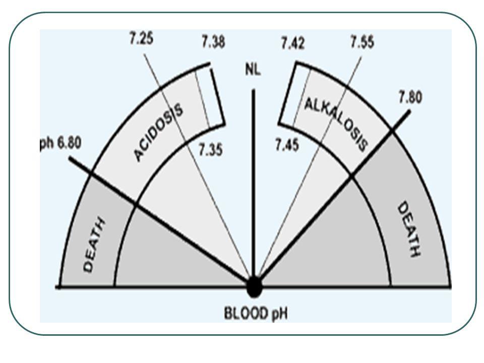 Egy tubulus sejt a proximális kanyarulatos csatornákban