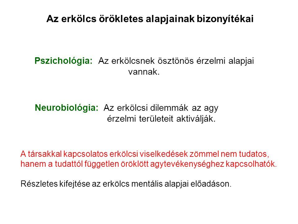 Pszichológia: Az erkölcsnek ösztönös érzelmi alapjai vannak.