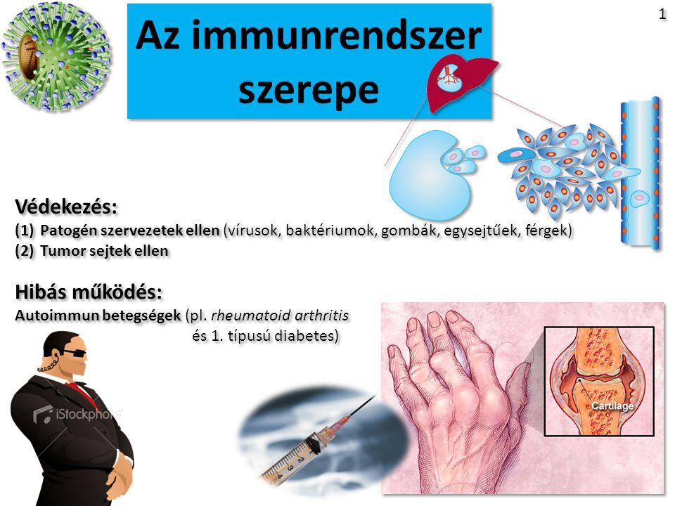 II. Adaptív Immunrendszer